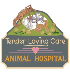 TLC Animal Hospital Medina Ohio